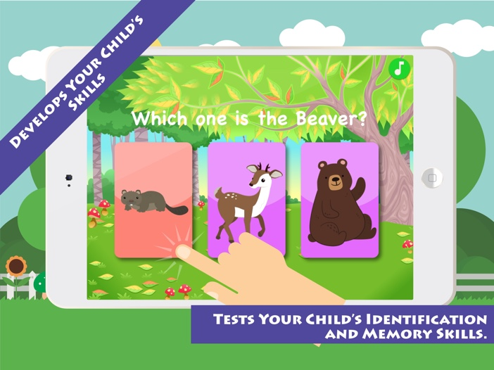 Match & Learn: Forest Animals